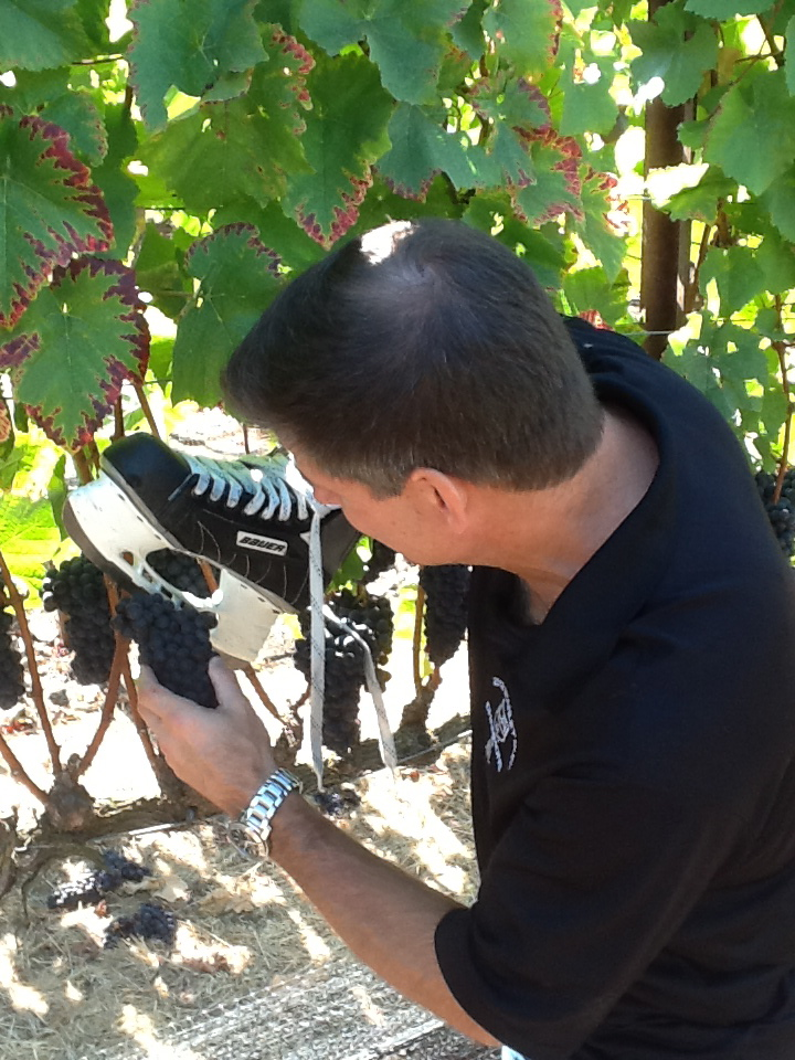 Jim cutting grapes with skate