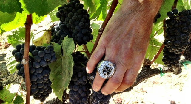 Jim's Ring and Grapes