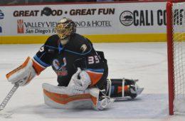 Courtesy of San Diego Gulls / AHL
